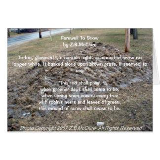 o poema do snowbird cartão comemorativo