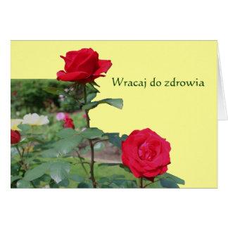 O polonês obtem a rosas vermelhas boas o cartão de
