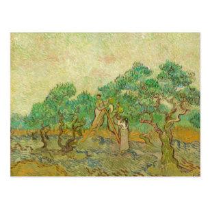 O pomar verde-oliva pelo cartão de Van Gogh