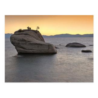 O por do sol em bonsais balança, Lake Tahoe… Cartão Postal
