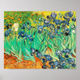 O poster Vincent van Gogh torna iridescentes 1889