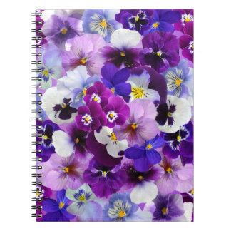 O primavera bonito dos Pansies floresce o caderno