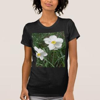 O primavera branco bonito floresce CricketDiane Camiseta