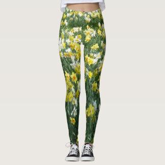 O primavera dos Daffodils floresce Legging