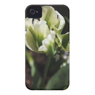 O primavera rega a fotografia botânica do jardim capas para iPhone 4 Case-Mate