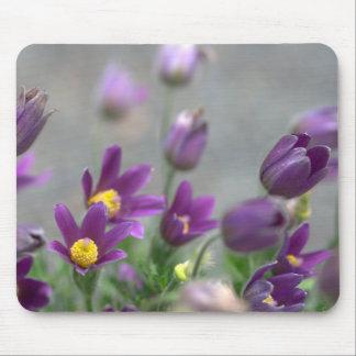 O primavera roxo floresce Mousepad