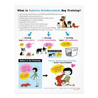 O que é posição Reinf. Treinamento do cão? INSECTO Flyer 21.59 X 27.94cm