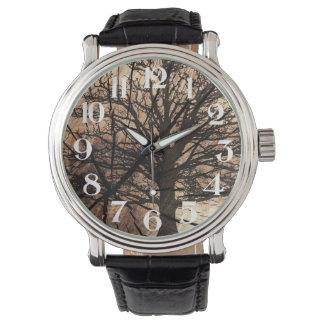 O relógio do Arborist
