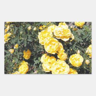 O rosa amarelo ensolarado floresce o ônibus adesivo retangular