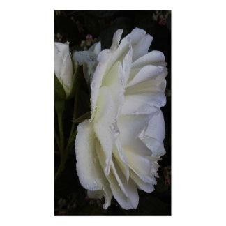 o rosa branco o mais fino cartão de visita