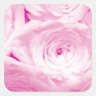 O rosa do rosa floresce a etiqueta quadrada para o adesivo quadrado