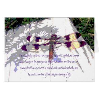 O significado da libélula da vida cartão comemorativo