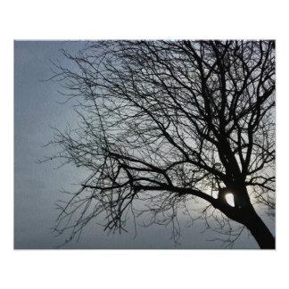o sol está escondendo impressão de foto