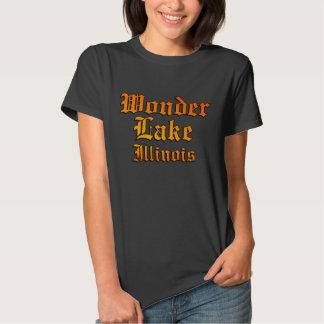 O t-shirt básico das mulheres idosas das épocas