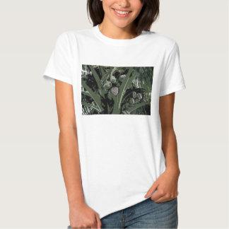 O t-shirt das mulheres da palma de coco