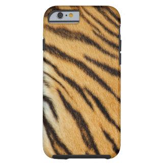 O tigre listra a caixa do iPhone 6 Capa Tough Para iPhone 6