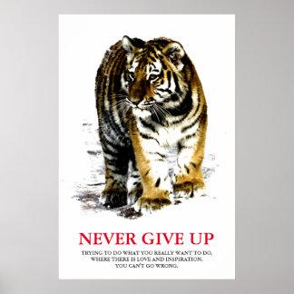 O tigre nunca dá acima inspirador pôster