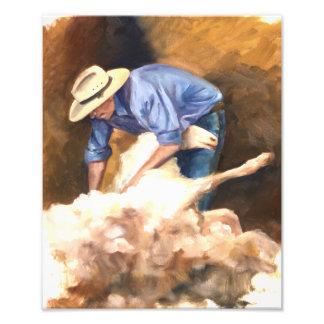 O tosquiador dos carneiros impressão de foto