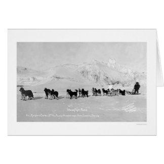 O trenó do cão patrocina Alaska 1910 Cartão Comemorativo