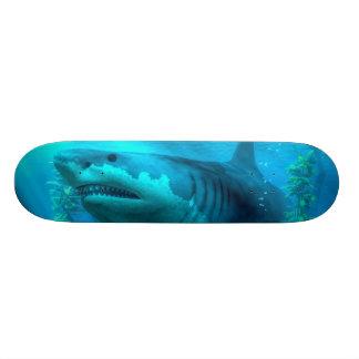 O tubarão o mais grande skates