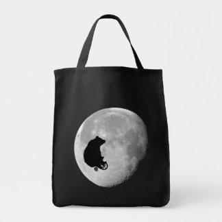 O urso no bolsa da lua