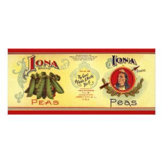 O vegetal do vintage pode etiquetar a arte, 10.16 x 22.86cm panfleto