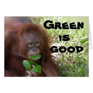 O verde é bom cartão