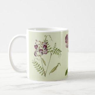 O Wildflower alpino botânico floresce a caneca de