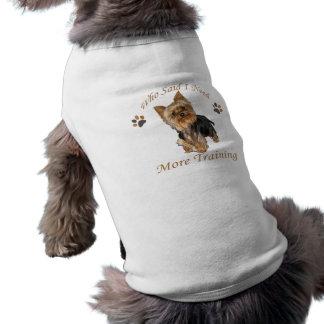 O yorkshire terrier precisa de treinar camisetas para caes