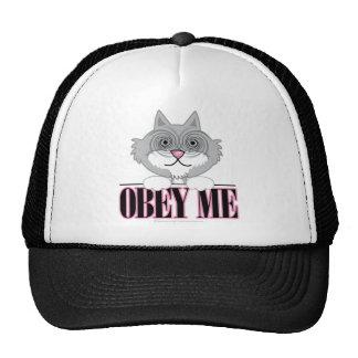 Obedeça-me: Gato Bonés