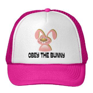Obedeça o coelho boné