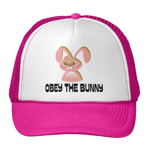 Obedeça o coelho bonés