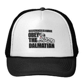 Obedeça o Dalmatian Bonés