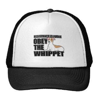 Obedeça o Whippet Boné