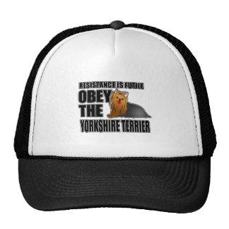 Obedeça o yorkshire terrier boné