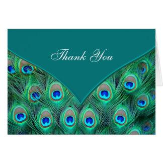 Obrigado azul do pavão da cerceta você cartões