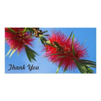 Obrigado cartão com fotos - flor vermelha do
