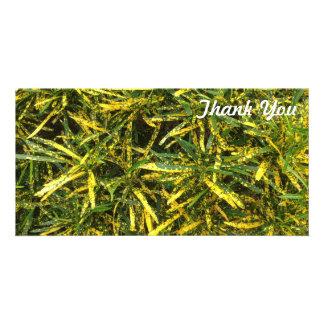 Obrigado cartão com fotos - folhas do Croton