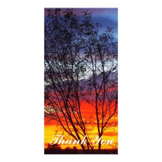 Obrigado cartão com fotos - por do sol