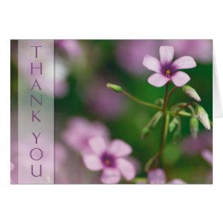 Obrigado - cartão cor-de-rosa da azeda de madeira