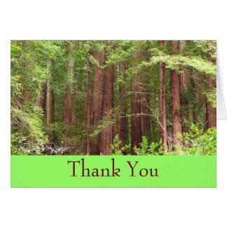 Obrigado cartão da floresta da sequóia vermelha