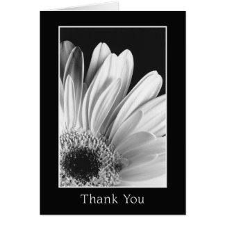 Obrigado - cartão da margarida de Gerber