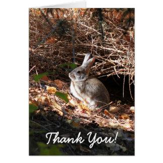 Obrigado cartão do coelho de coelho