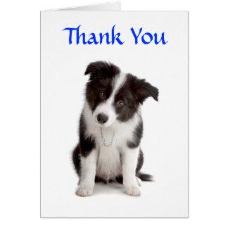 Obrigado cartão do filhote de cachorro de border