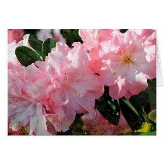 Obrigado cartão do primavera da azálea