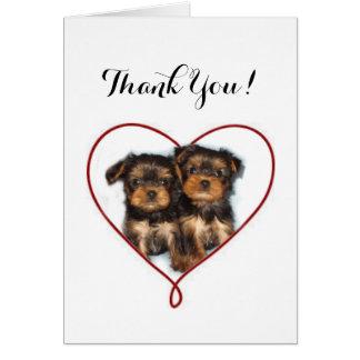 Obrigado! Cartão do yorkshire terrier