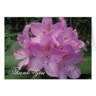 Obrigado cor-de-rosa de Rhody você Cartão