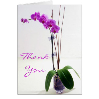 Obrigado da orquídea de Fuschia você cartões