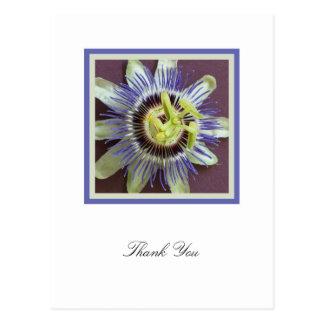 Obrigado da simpatia da flor da paixão você cartão cartoes postais