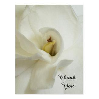 Obrigado da simpatia do Gardenia você cartão
